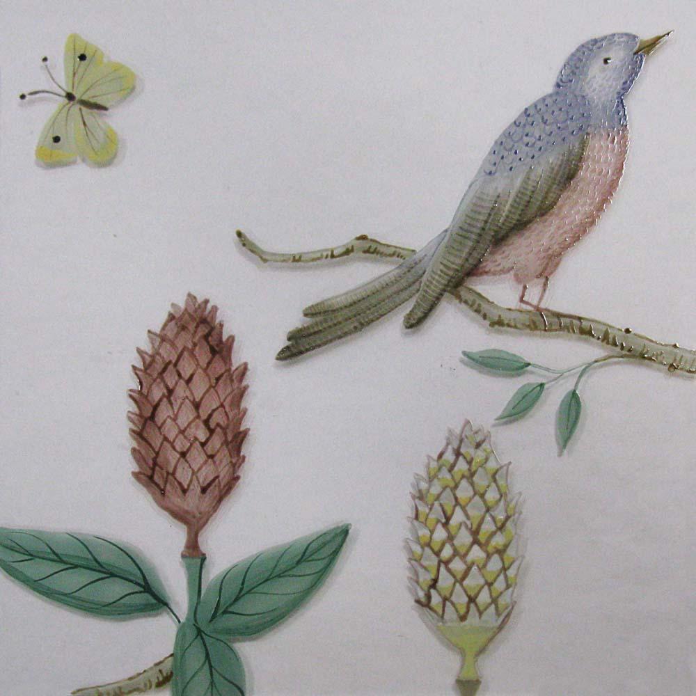 butterfly, bird, protea